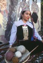 Los Mapuches : Origen y habitantes