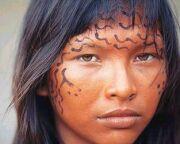 Los ind�genas que poblaron Chile